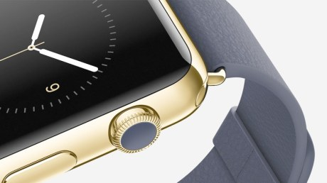 apple scout life watch
