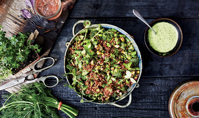 bon appetit scout life quinoa salad