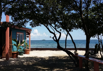 airbnb scout life bird island 7