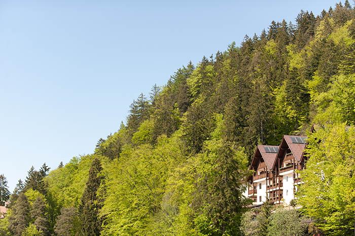 miramonti-hotel-scout-life-6